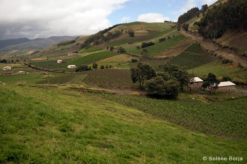 Vallée-Solene-Borja