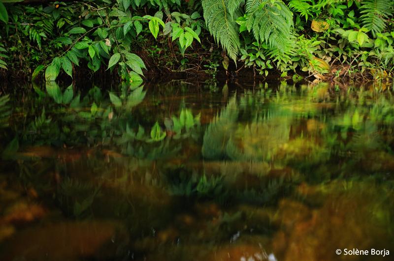 eau2_solene_borja