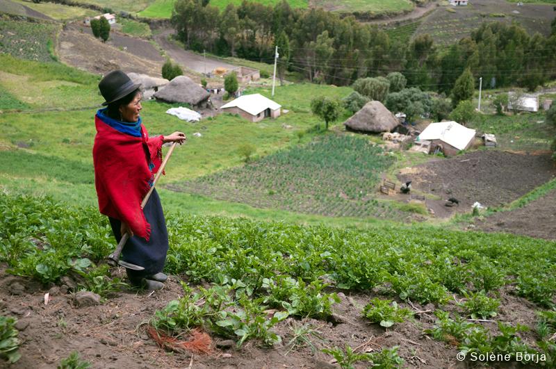 travail-terre-2 Solene Borja